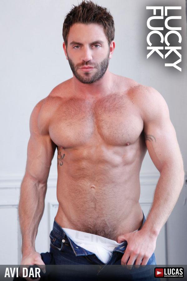 Gay Avi 3