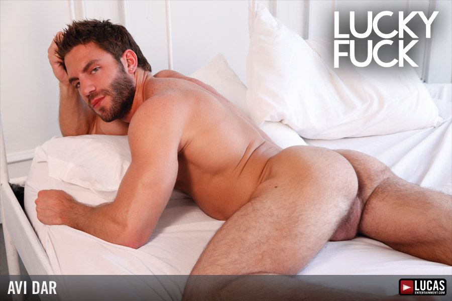 avi dar gay porn Gay Bareback Sex Pornstar Avi Dar -- Watch him fuck raw guys and seed their  assholes on Lucas Entertainment!.