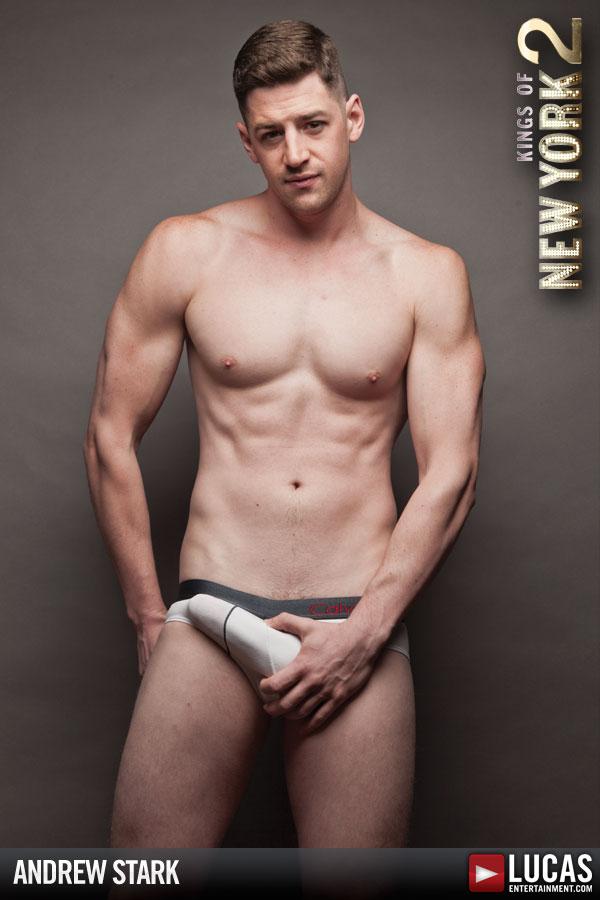 andrew gay porn Andrew Stark now doing live cam shows (tips @ Matt  - Men of Porn.
