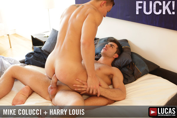 Mike colucci harry louis 12