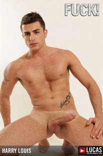 Mla37 harry louis 03 310x240