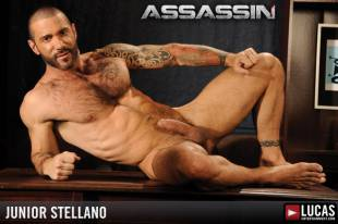 Junior stellano 1 310x240
