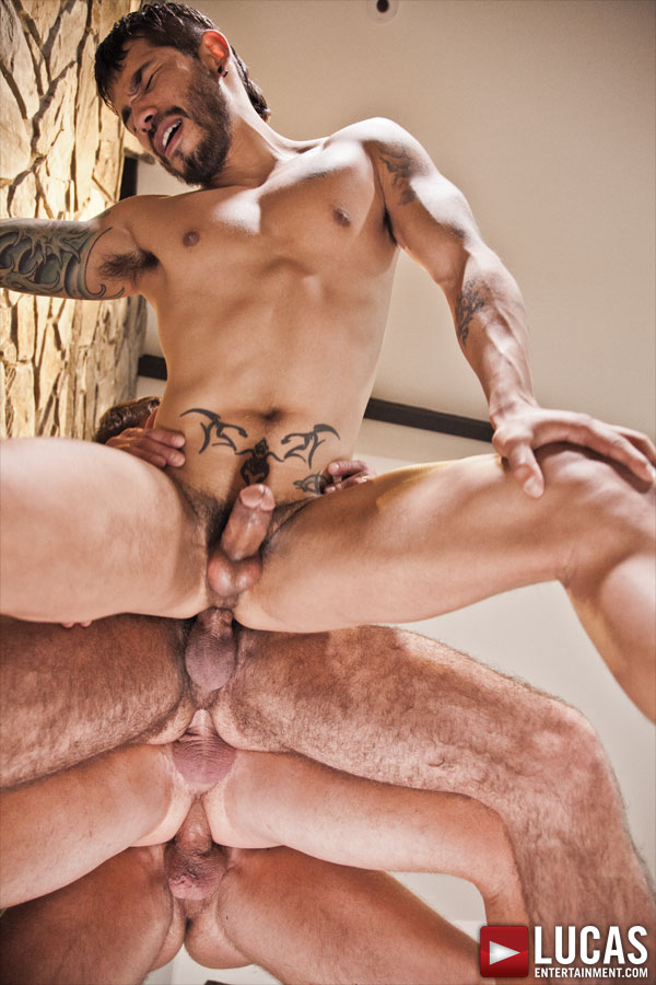 Gay men bareback sex