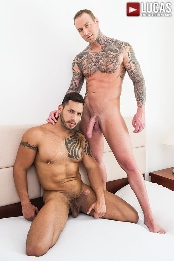 aebn gallery gay the latest gay porn collection