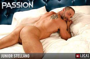 Junior stellano 8 310x240