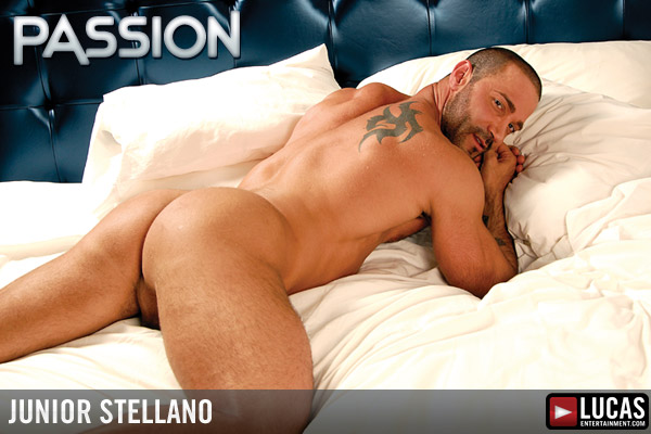 Junior stellano 8