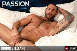 Junior stellano 9 256x178