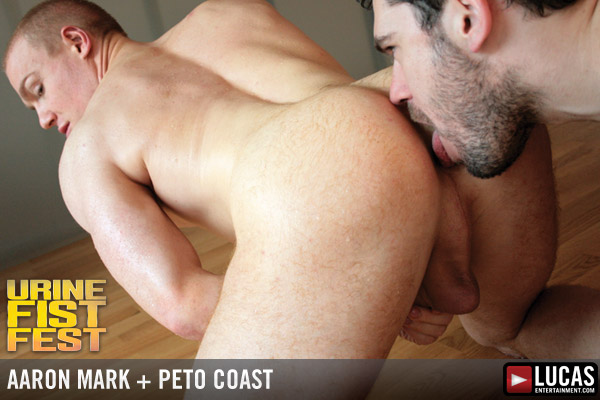 Aaron mark peto coast 4