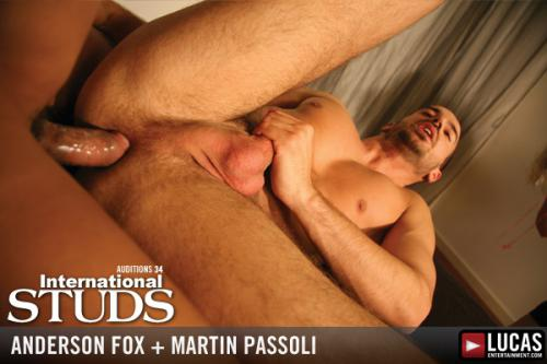 Anderson fox and martin passoli 6