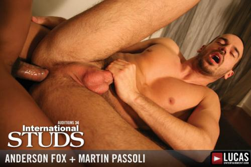 Anderson fox and martin passoli 7
