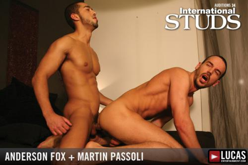 Anderson fox and martin passoli 8