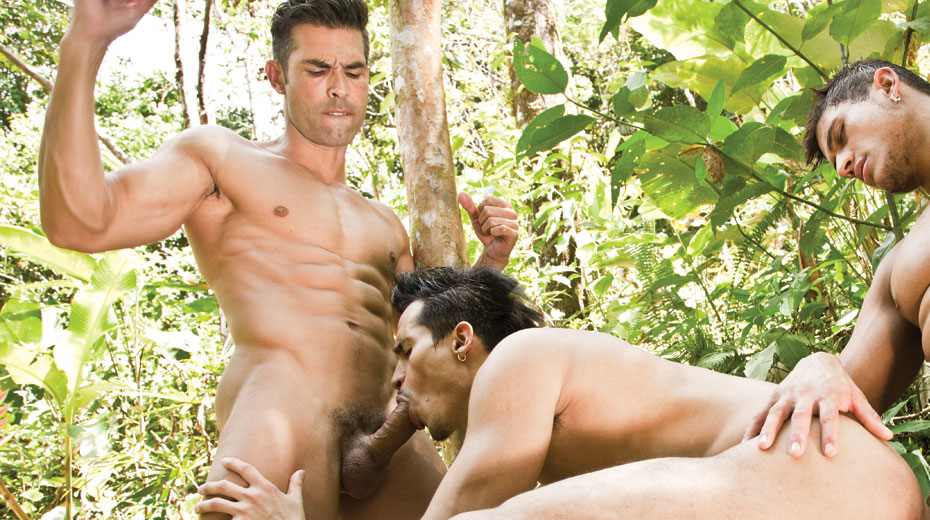 free gay picture and home page