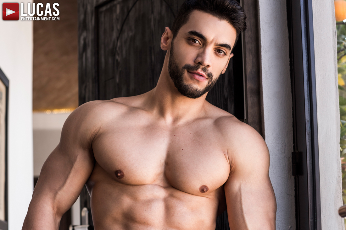Arad Winwin, The Arab Alpha Top, Strikes Again